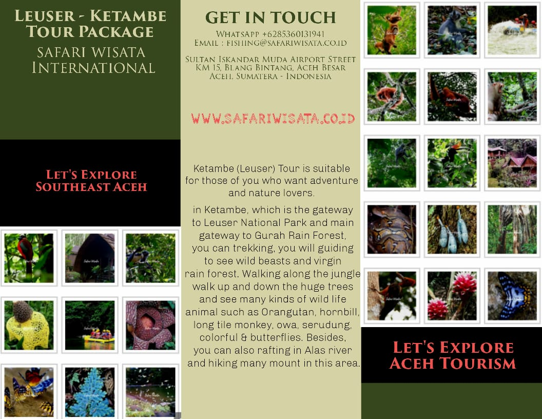 Paket Wisata Gunung Leuser - Tour Ketambe & Taman Leuser Aceh Tenggara