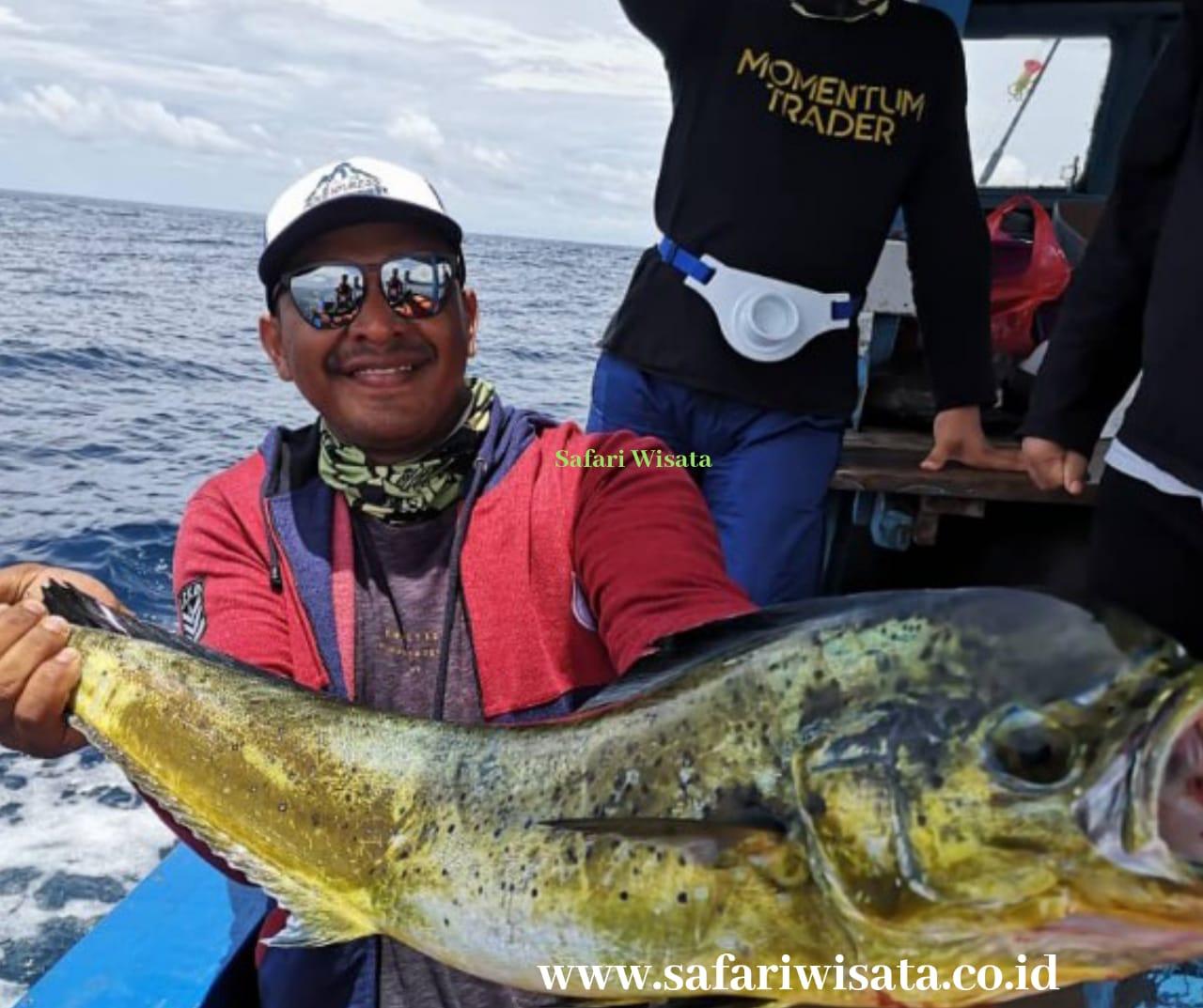 12 Ikan Target Mancing Mania Di Aceh Indonesia Laut Lepas Air Tawar Freshwater Saltwater Safari Wisata International
