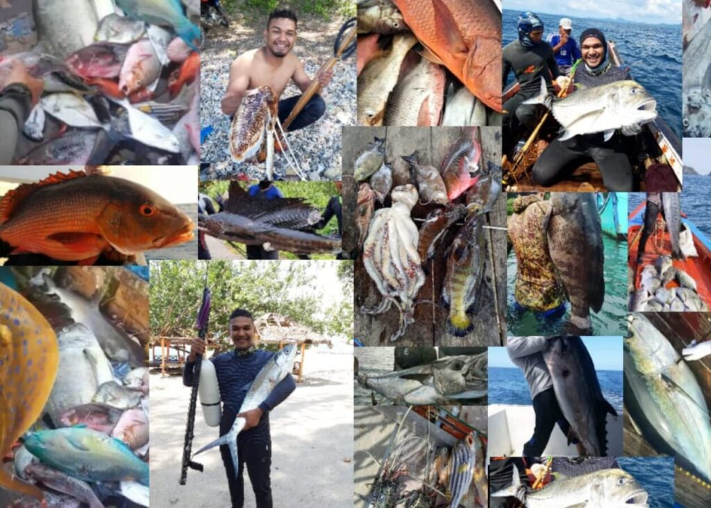spearfishing di Indonesia